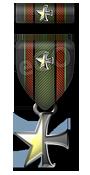 DoD:S Medal of Valor