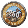TF2 250 Hours Played